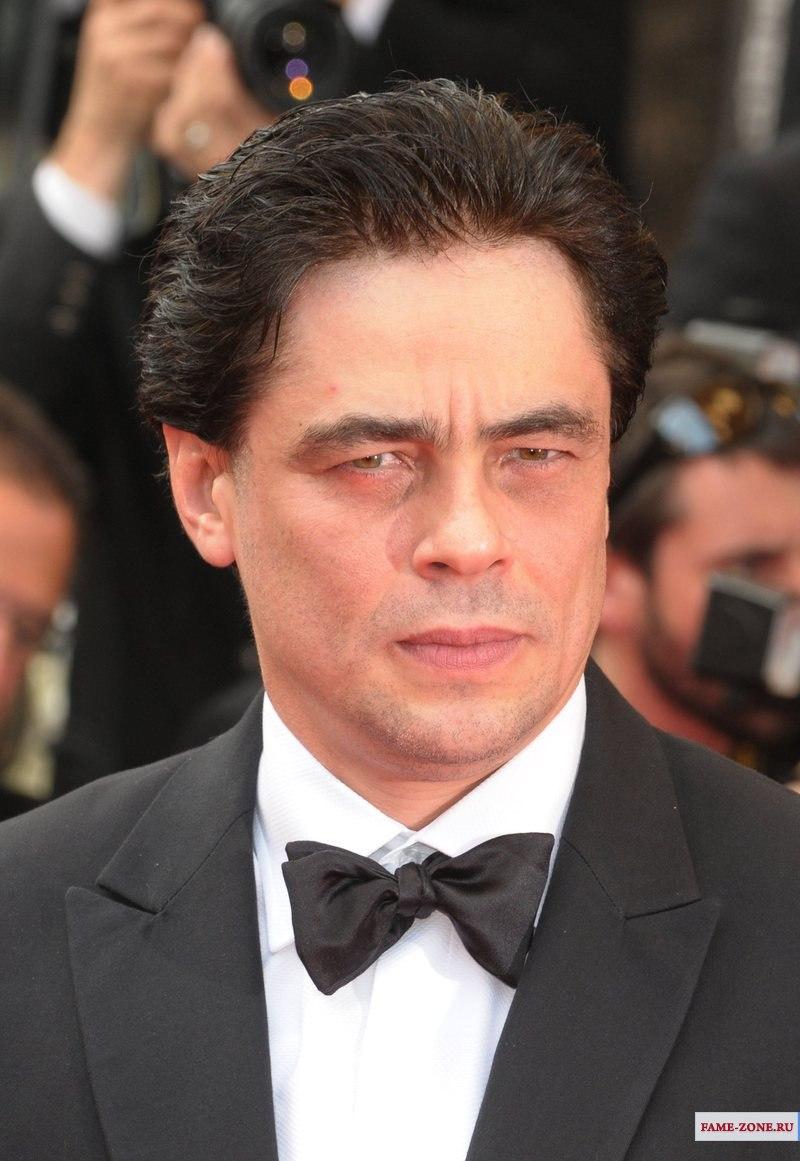 Фотография Бенисио Дель Торо. Benicio Del Toro